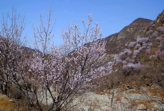 花沟大峡谷