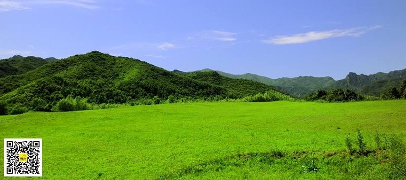 玉渡山14