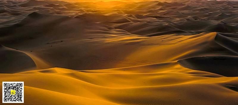 库布齐沙漠41