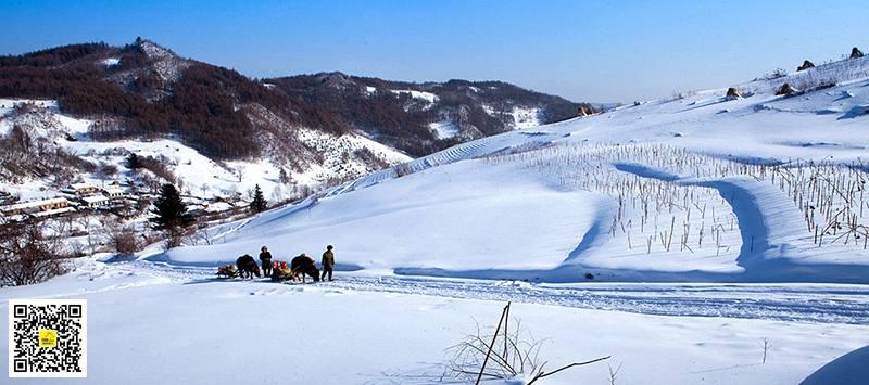 雪村松岭16