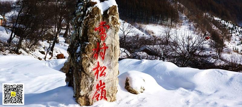 雪村松岭15