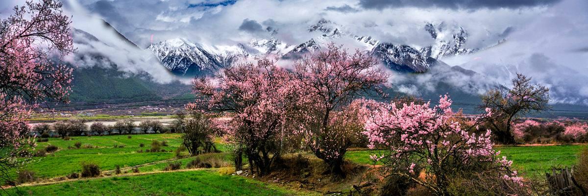 中国最美桃花 中国最美山峰&&林芝桃花节,南迦巴瓦峰,徒步雅鲁藏布大峡谷