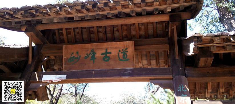 阳台山春季13