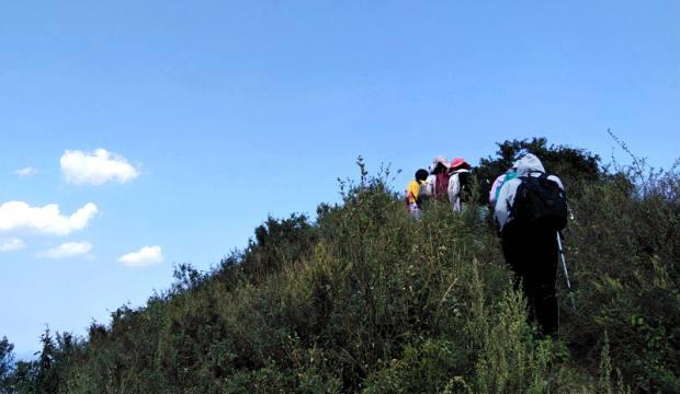 【8.7周六】徒步西山龙脊 大风口 上方寺 凤凰岭